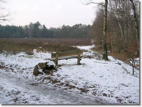 winters oosterbeek 12 20130611 1235596429
