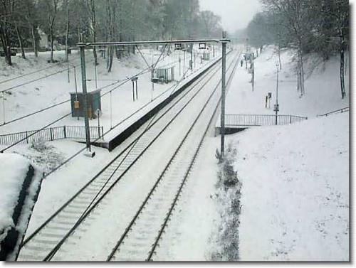 winters oosterbeek 13 20130611 1678097615