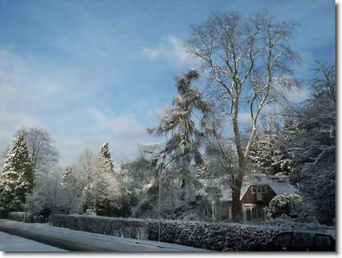 winters oosterbeek 14 20130611 1011480179