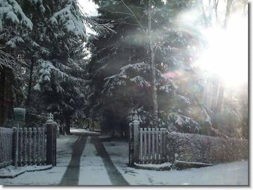 winters oosterbeek 4 20130611 1033767534